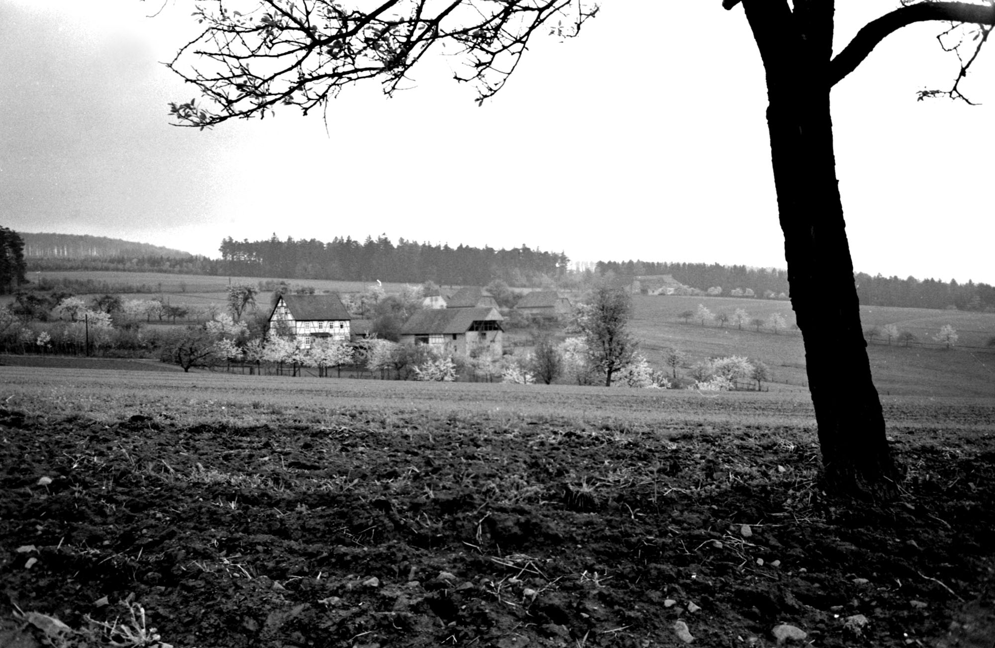 Frohnhof