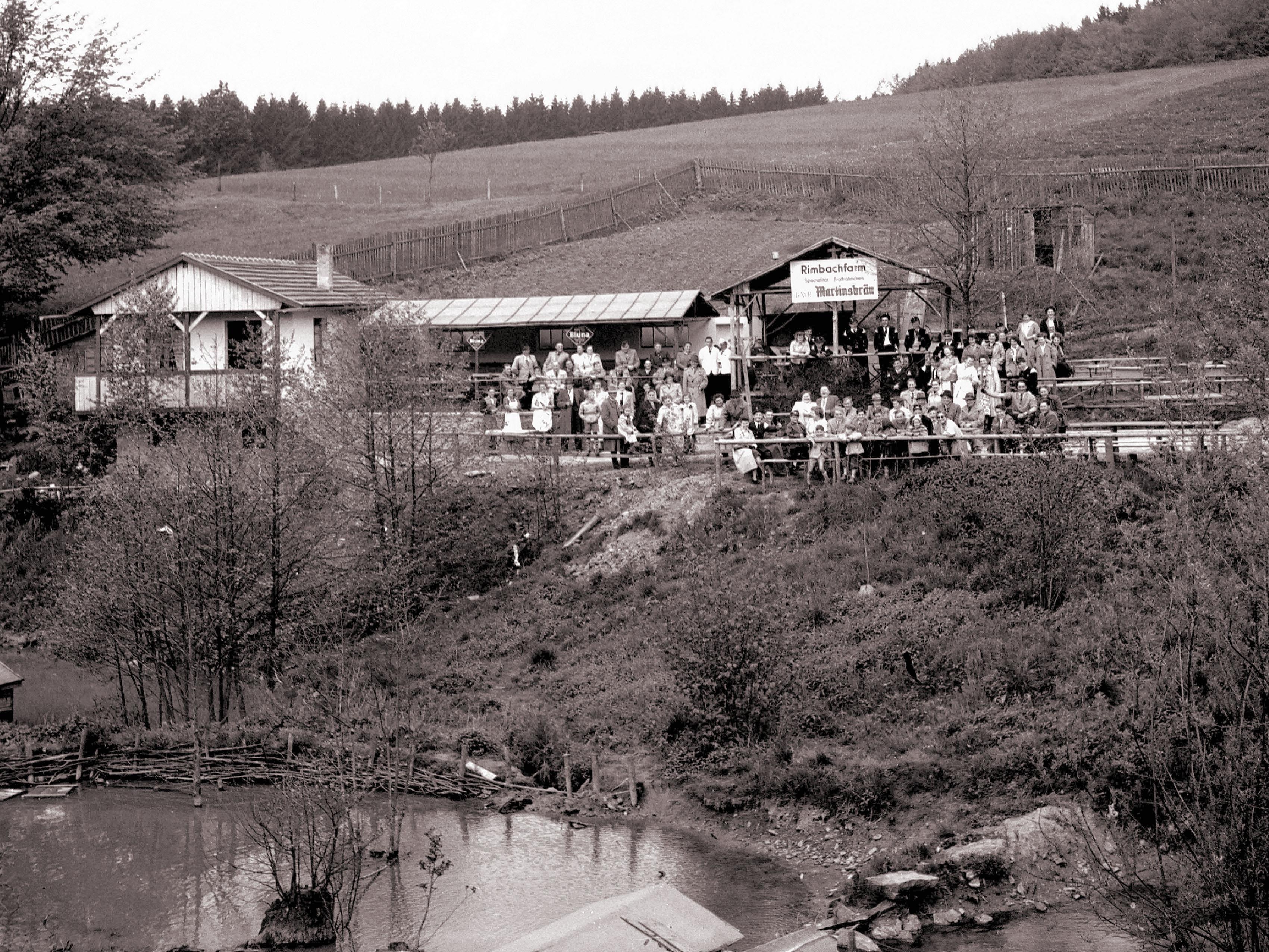 RIMBACHFARM_19541